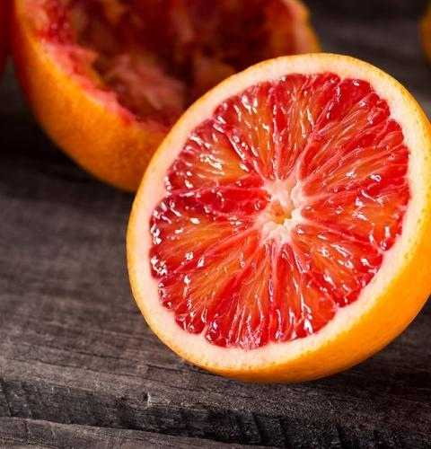 نهال پرتقال خونی (نهالستان جلیلی)