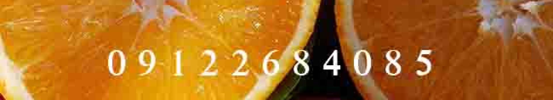 نهال پرتقال (نهالستان جلیلی)