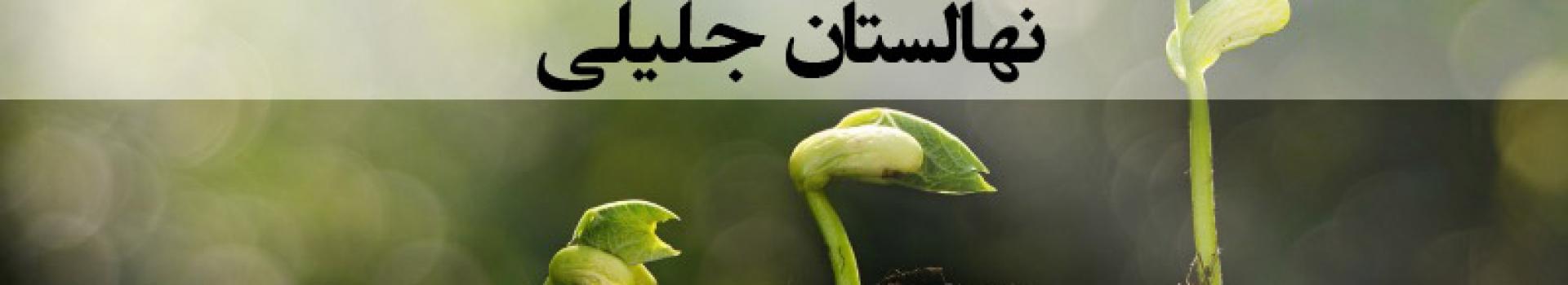 طریقه اصولی کاشت نهال میوه